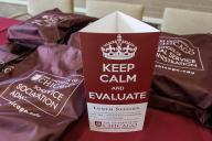 KEEP CALM and Evaluate: The Crisis Intervention Pilot Program as a Case study on Program Evaluation